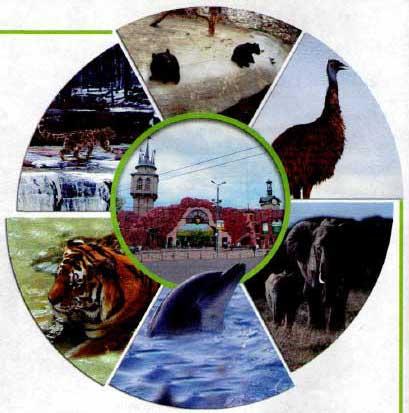 Учебник Spotlight 6. Student's Book. Spotlight on Russia-10