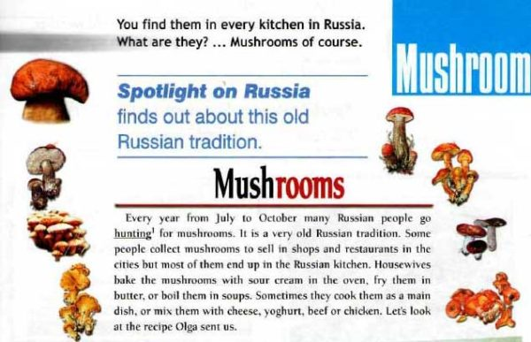 Учебник Spotlight 6. Student's Book. Spotlight on Russia-11