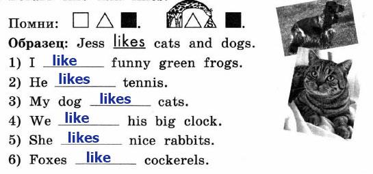 Рабочая тетрадь Enjoy English 2. Страница 53