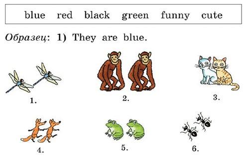 Учебник Rainbow English 2. Step 39