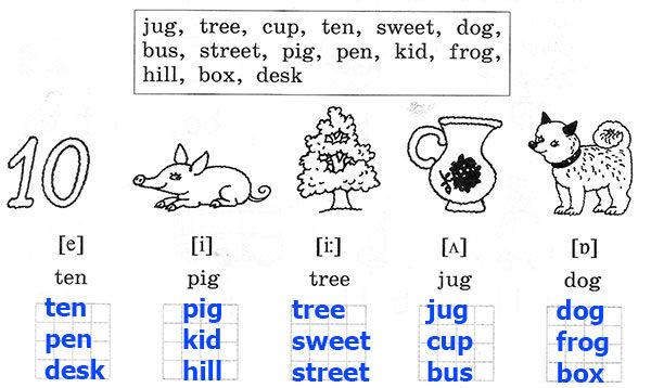 Рабочая тетрадь Rainbow English 2. Step 11