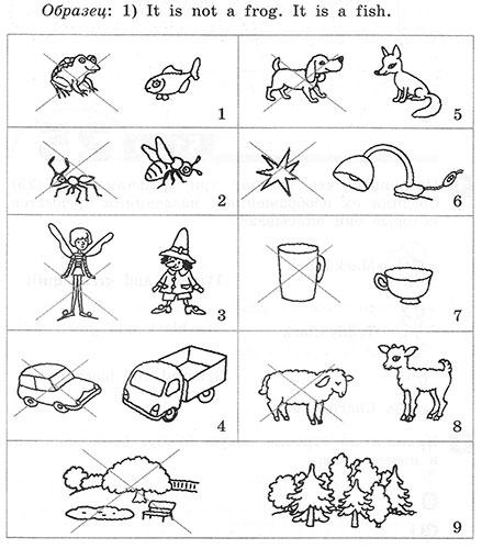Рабочая тетрадь Rainbow English 2. Step 25