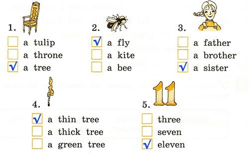 Контрольная работа. Rainbow English 2. Урок 43-49. Вариант 3
