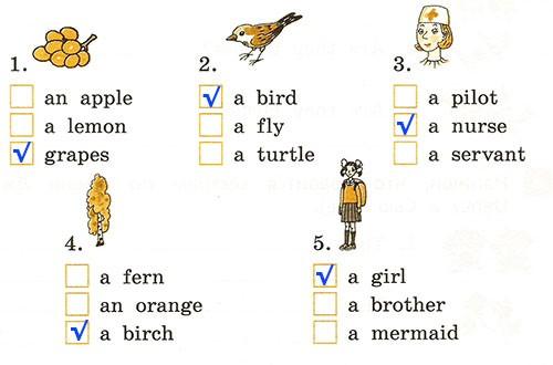 Контрольная работа. Rainbow English 2. Урок 50-56. Вариант 2