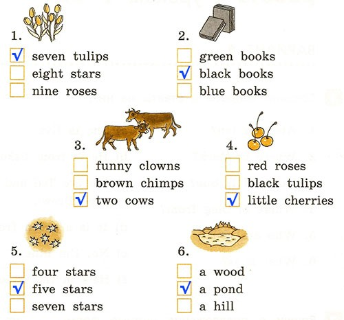 Годовая контрольная работа. Rainbow English 2. Урок 1-63. Вариант 1
