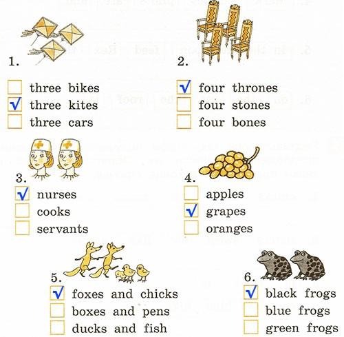 Годовая контрольная работа. Rainbow English 2. Урок 1-63. Вариант 2