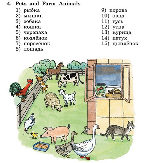Учебник Rainbow English 3. General Summing Up