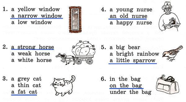 Контрольные работы Rainbow English 3. Unit 3. Вариант 1